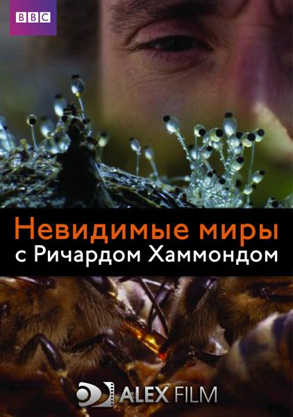 BBC: Невидимые миры. Русский перевод AlexFilm